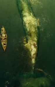 GEEK OUT! Moby Dick inspiration IN THE HEART OF THE SEA gets a new trailer
