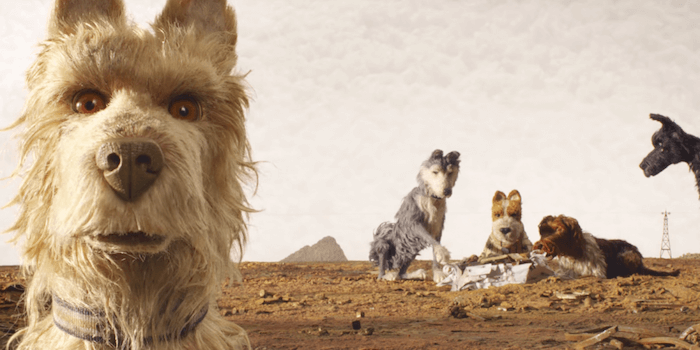 isle of dogs movie trailer wes anderson